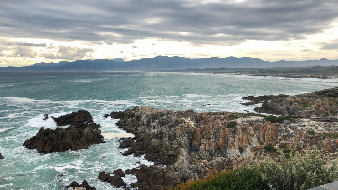 14 reasons to explore the Western Cape when traveling to Cape Town